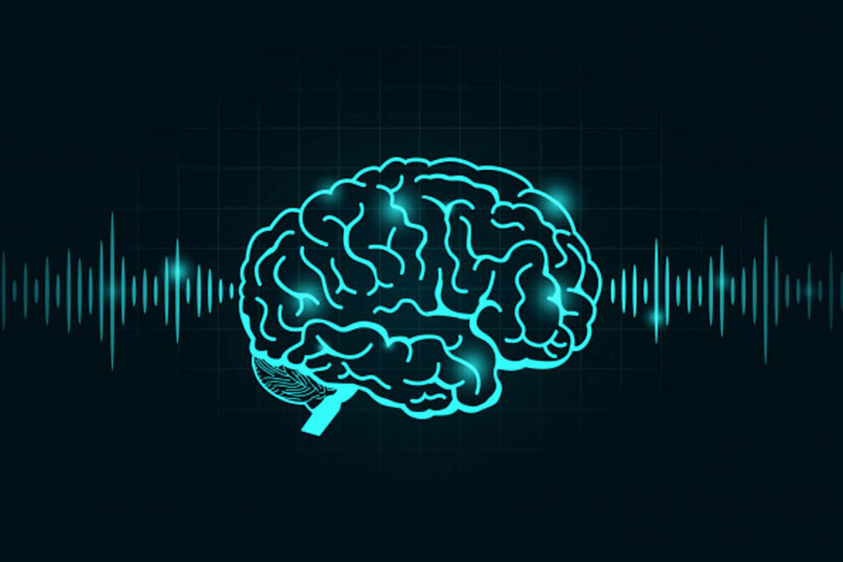 Sound and The Brain